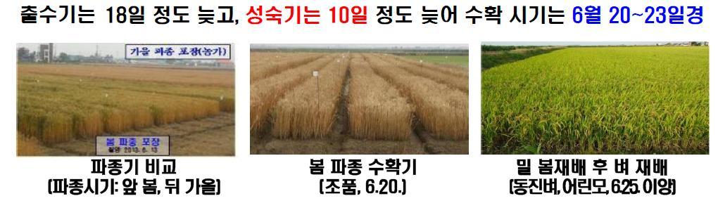 봄파종수확시기.JPG